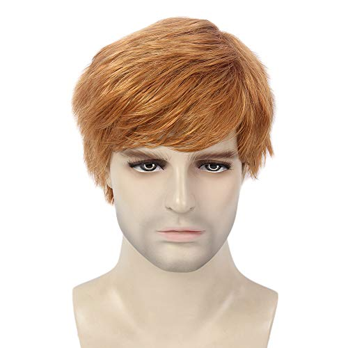 H&Bwig Men Wig Short Natural Dark Brown Hair Synthetic Full Wigs Male Guy Daily Cosplay Costume Party (#27C)