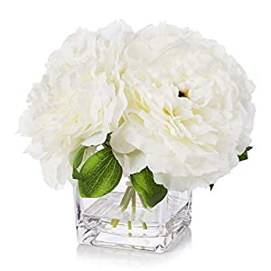 Enova Home Silk Peony Flowers Arrangements in Cube Glass Vase with Faux Water for Home Table Wedding Centerpiece Decoration (Cream)