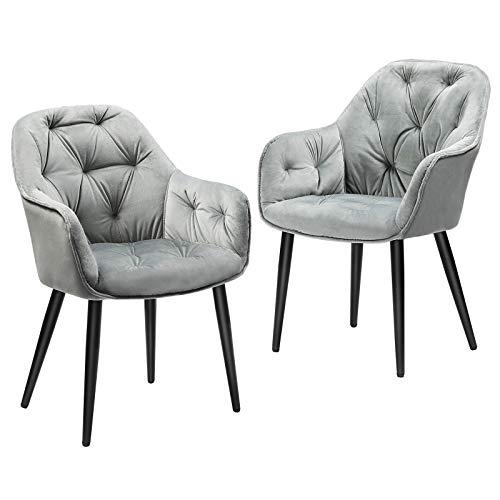 Esszimmerstühle 2er Set Samt Küchenstühle grau Polsterstuhl mit armlehne Wohnzimmerstühle elegant Microfaser Stühle, Schwarz Metallbeine Belastbar bis 180kg