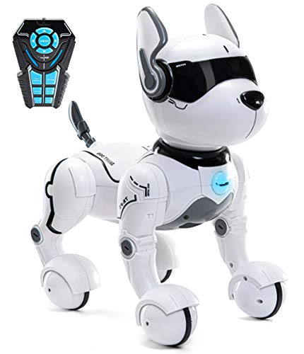 Remote Control Robot Dog Toy, Robots for Kids, Rc Dog Robot Toys for Kids 2,3,4,5,6,7,8,9,10 Year Old and up, Smart & Dancing Robot Toy, Imitates Animals Mini Pet Dog Robot…