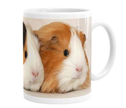 Merchandise for Fans Becher aus Keramik - 330 ml Motiv: Meerschweinchen zwei Tiere nebeneinander Porträt (01)