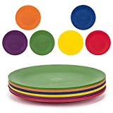 Plastic Plates Set of 12 - Unbreakable and Reusable 9.875 inches Dinner Plates, Multicolor | Dishwasher Safe, BPA Free