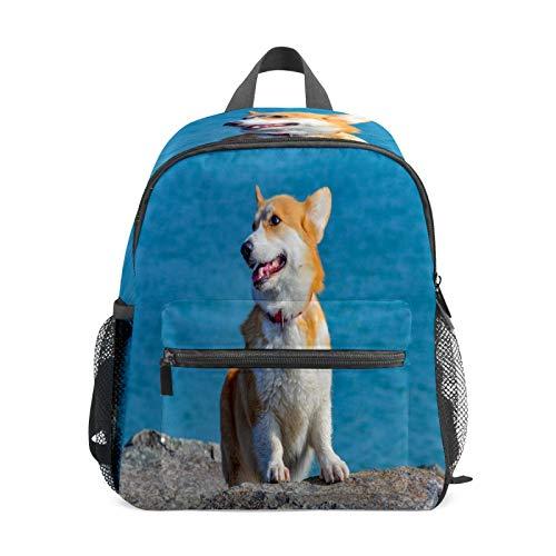 Mochila infantil para niños de 1 a 6 años de edad, mochila perfecta para niños y niñas Corgi perro mascota animal lindo mar