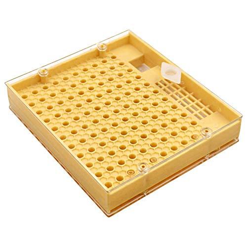 M.Z.A Caja de cría de reina Herramienta para el equipo del apicultor Suministro de apicultura para la herramienta de apicultura del sistema cupularve
