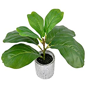 """Silk Flower Arrangements 12.5"""" Faux Fiddle Leaf Fig Tree Artificial Mini Potted Plants , Fake Ficus Lyrata Small Greenery in Cement Pots for Offices Kitchen Indoor Home Décor"""