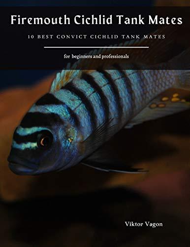 Firemouth Cichlid Tank Mates: 10 Best Convict Cichlid Tank Mates