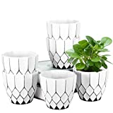 Small Planter, ZOUTOG 4.5 Inch Decorative Planters, Small Flower Pots for Plant Hangers, Succulents , Herbs, Little Snake Plants, Pack of 6, Plants not Included