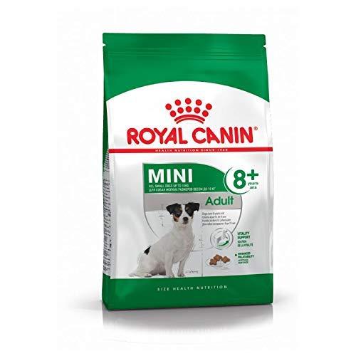 RoyalCanin Mini Adult 2kg 8+. Comida para Perros de Razas Pequeñas y Toys | Pienso Gastrointestinal con Gran Sabor que Controla el Peso, Elimina el Sarro Dental y Mantiene el Pelo y la Piel Saludables