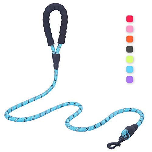 Bolux 5ft Dog Leash with Comfortable Padded Handle, Highly Reflective Threads and Heavy Duty Training Durable Nylon Dog Leash for Medium Large Dogs (Black)
