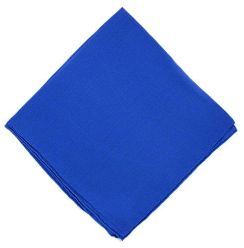 Un mouchoir en soie bleue unie Michelsons