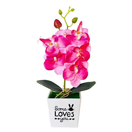 orchidea in vetro senza terra KingbeefLIU Fiore con Vaso Artificiale Farfalla Orchidea Bonsai Falso Arredamento per La Casa Rosso