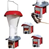 best chicken feeder to prevent waste Roamwild