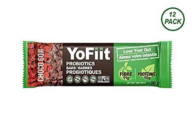 Goji-Chocolate High Fiber Protein
