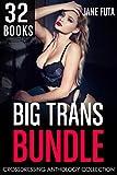 Big Trans Bundle: 32 BOOKS Transgender, Crossdressing, and Feminization Box Set Collection