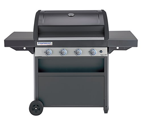commercial barbecue gaz weber professionnel