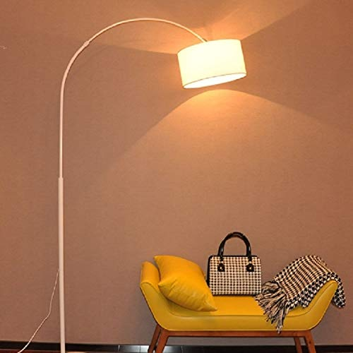 Koper Living Room Bedroom Study Simple Remote Control Floor Lamp (H Black + 5W LED warm licht) Modern Style Floor Lamp (Color : B White+5W LED Warm Light)