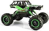 Wghz Coche de Juguete Off Road Rock Crawler Car 1:18 Coche de Juguete Camión de Control Remoto Camión eléctrico de Alta Velocidad Recargable RC Camión Deportivo electrónico Carrera Buggy Todo TER