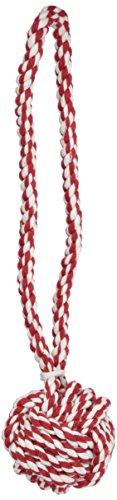 Zanies - Giocattoli per cani a forma di nodo del pugno di scimmia