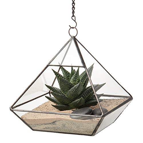 Ultra 15x15x15,7 cm driehoekig helder glas terrarium geometrische vorm voor de weergave van bruiloftszakjes Uniek centreerwerk of vensterbanken voor luchtinstallatie op afstand moss vetplanten in de tuin