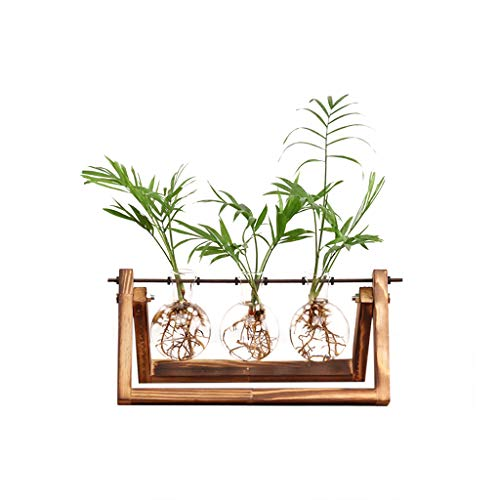 Ivolador Desktop Glass Planter Bulb Vase with Retro Solid Wooden Stand and Metal Swivel Holder for Hydroponics Plants Home Garden Wedding Decor (3 Bulb Vase)