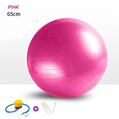 WZHR Yoga Mat 4Pcs Sport Fitness Yoga Ball Set Incluye 65Cm Fitball Pilates Balance Gym Ejercicio Yoga Ball Yoga Mat Toalla Pedal Ttension Cuerda 65Cmpink