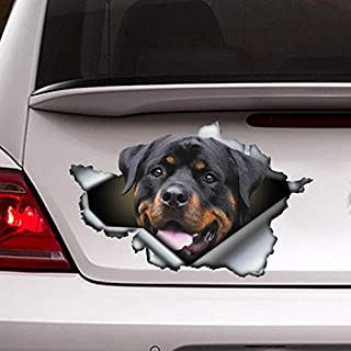 Rott car Decal, Rottweiler car Sticker, pet Decal Vinyl Sticker for Cars, Windows, Walls, Fridge, Toilet and More - 15 Inch