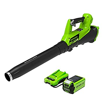 Greenworks 40V  115 MPH / 430 CFM  Brushless Cordless Axial Leaf Blower 2.0Ah Battery and Charger Included BA40L210