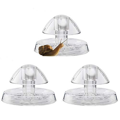 Besimple 3Pcs Snail Catcher, Plastic Snail Trap Plants Planarian Leech Catch Box for Aquarium Fish Tank, 3.15inch/8cm
