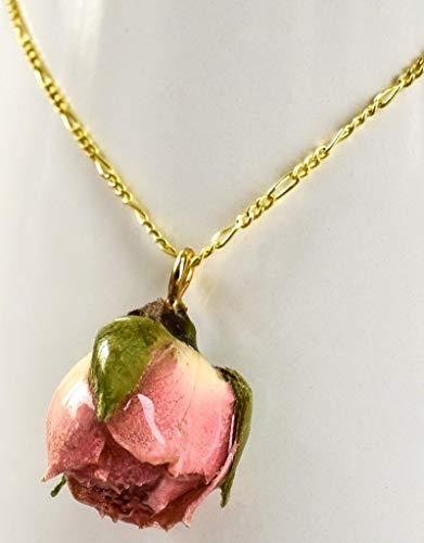Echte Rose Anhänger Kette 50cm - Vergoldet - 925 Sterling Silber - Blütenschmuck Echt Blume