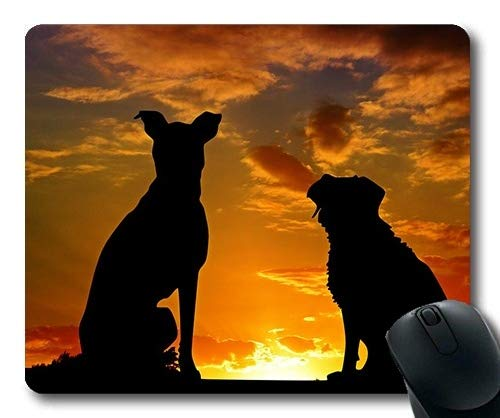 Tappetino per mouse personalizzato, Cani animali domestici Tappetini per mouse, Cani Animali Tramonto Amici Amicizia Affetto, cani Gaming tappetino per mouse