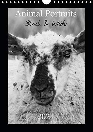 Animal Portraits Black & White 2021 CH Version (Wandkalender 2021 DIN A4 hoch)