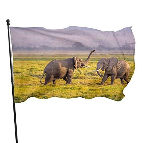 GOSMAO Bandera de jardín Te enseñaré Colores Vivos y Resistente a la decoloración UV Banner de Patio de Doble Costura Bandera de Temporada Banderas de Pared 150X90cm