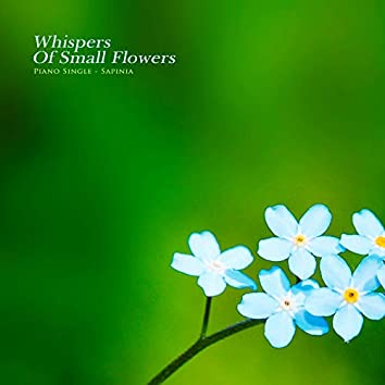 Whispers of small flowers