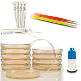 Amazing Bacteria Science Kit - Prepoured Agar Plates Kit - Top Science Fair Project Kit - Superior...