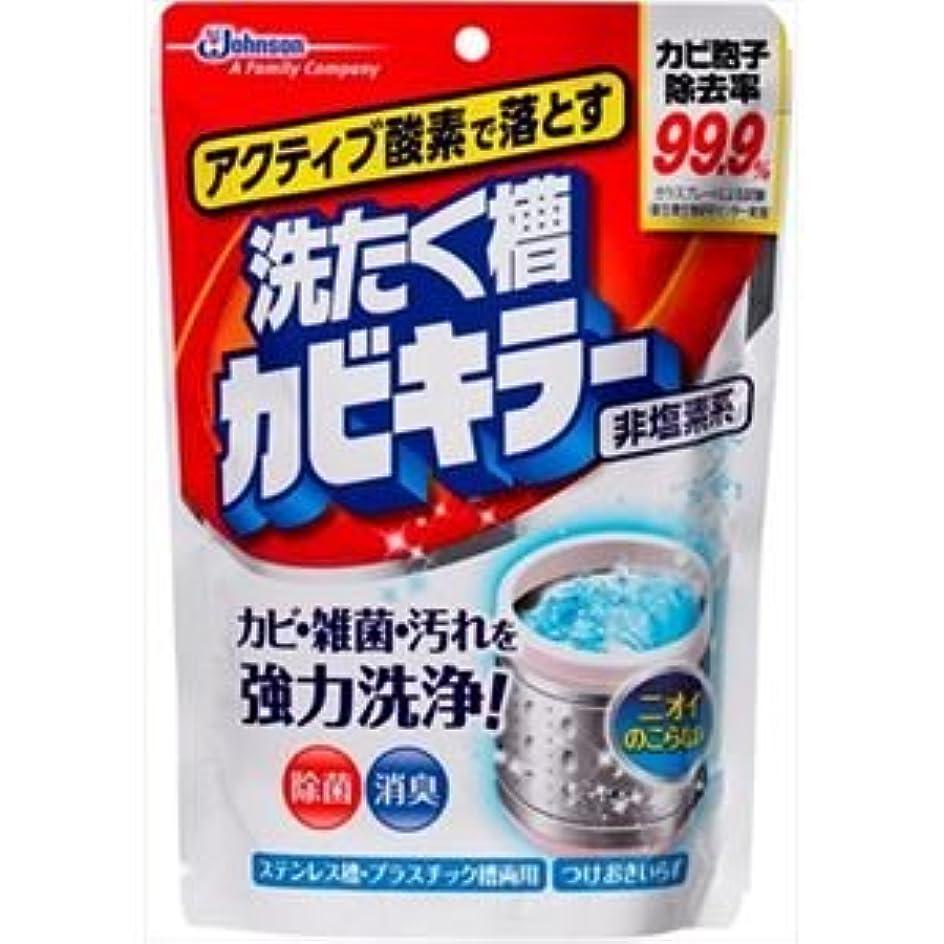典型的な初期のつかいます(まとめ)ジョンソン アクティブ酸素で落とす洗濯槽カビキラー250G 【×5点セット】
