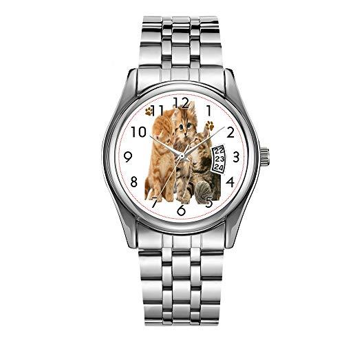 Montre de luxe pour homme étanche jusqu'à 30 m avec date et affichage de la date - Montre à quartz décontractée pour Noël - Motif chats et t-shirts