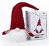 Anstore Weihnachten Deko Wichtel 49 cm Hoch, Schwedische Wichtel Santa Dolls mit LED, Weihnachtsmann Santa Tomte Gnom für Kinder Familie Festliche Geschenk, Ostern Weihnachten Tischdekoration