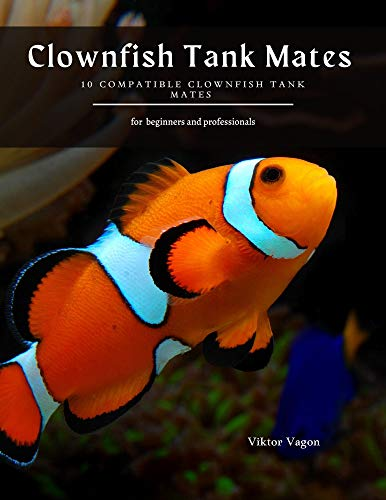 Clownfish Tank Mates : 10 Compatible Clownfish Tank Mates (English Edition)