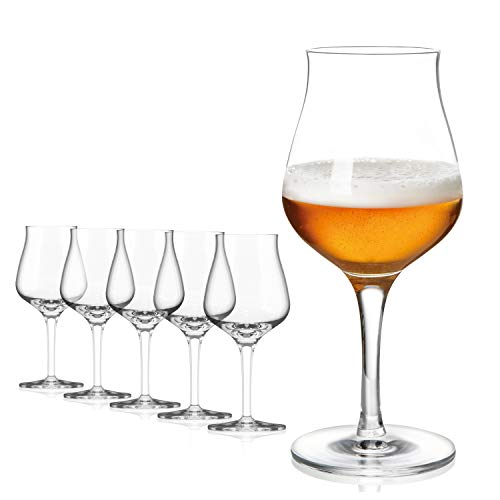 SAHM Biergläser Set 6 STK | 420ml Bier Sensorik Pokal | Bier Gläser Spülmaschinengeeignet | Ideales Gourmet Bier Geschenk und Craft Beer Gläser