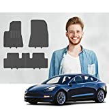 Road Comforts Tesla Model 3 Custom Fit Floor Mats - 2017 2018 2019 2020 2021 - Protect Floor from Dirt, Mud, Snow, Slush & Water - Front and Second Row (4pcs) (Black)