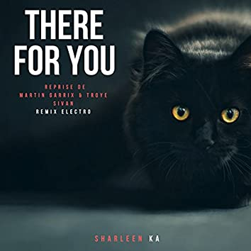 There for You (Reprise De Martin Garrix & Troye Sivan Remix Electro)