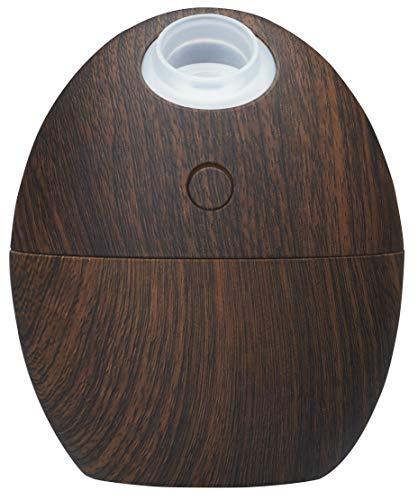 グリーンハウス たまご形 卓上 静音 USB加湿器 超音波式 GH-UMSEK-DE