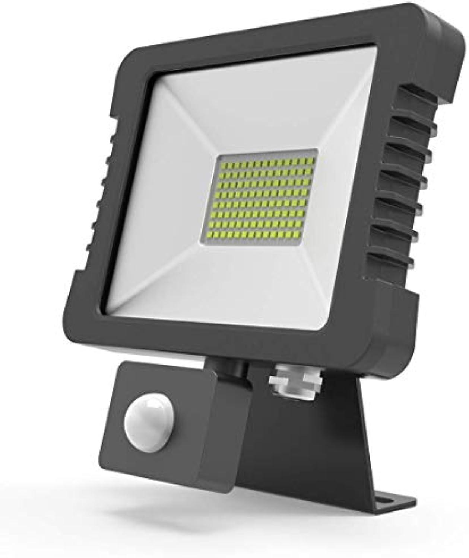 LeuchTek Fluchtlicht mit HF Sensor, Aluminium, Schwarz, One Größe