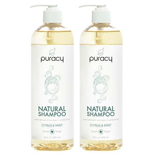 Puracy Natural Daily Shampoo, No Sulfate Formula, All Hair Types, 16 Ounce...