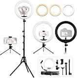 12.6 inch Ring Light with Tripod and Desk Stand, Adjustable LED Circle Light with Extendable Tripod 69', USB Powered, Heighten Hose, Phone Holder for iPhone Streaming, Video Recording, Camera