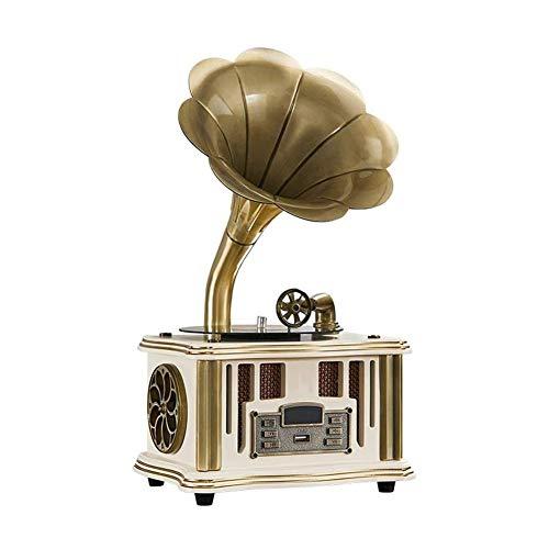 JIE KE Caja de música Altavoz inalámbrico de la Plataforma giratoria de fonógrafo, con Radio FM, Puerto USB para la Unidad Flash, Estilo Retro Vintage de gramófono (Color : C)