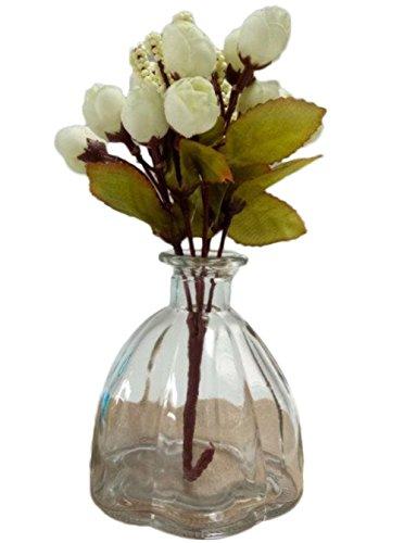 LAMEIDA Vase en verre forme de citrouille Terrariums Plantes hydroponiques Floral culture de l'eau ornement d'ornement de plantes Rétro petite bouche de bouteille (Transparent)