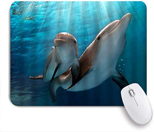 Benutzerdefiniertes Büro Mauspad,Dolphin Marine Life Ocean Landscape Unterwasserwelt Natural Novel,Anti-slip Rubber Base Gaming Mouse Pad Mat