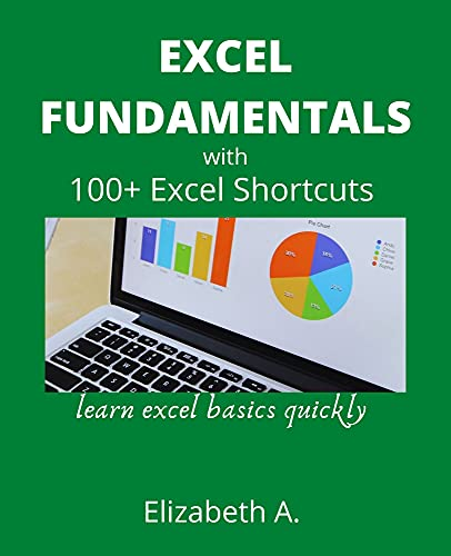 EXCEL FUNDAMENTALS WITH 100+EXCEL SHORTCUTS: learn excel basics quickly (English Edition)