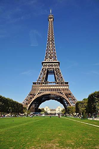 DIY Oil Painting Paint by Number Kits Painting for Adults and Kids Arts Craft for Home Wall Decor-Eiffel Tower, Paris, France